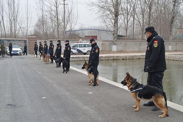 市公安局刑警支队领导视察七兵堂警犬训练基地